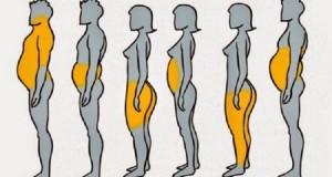 grasso-corpo